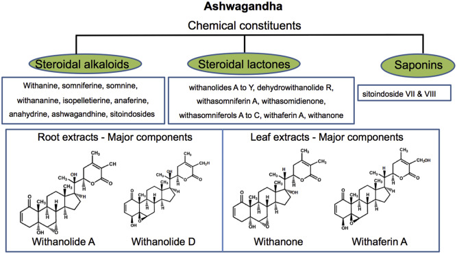 Ashwagandha Chemical constituents