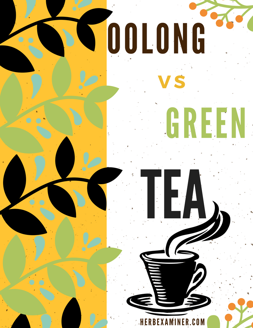 oolong vs green tea header