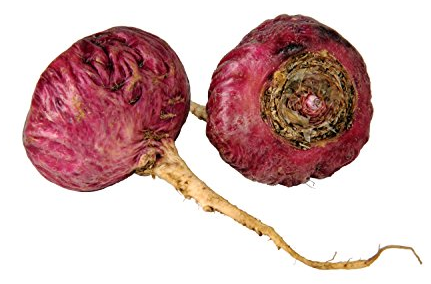 red maca image