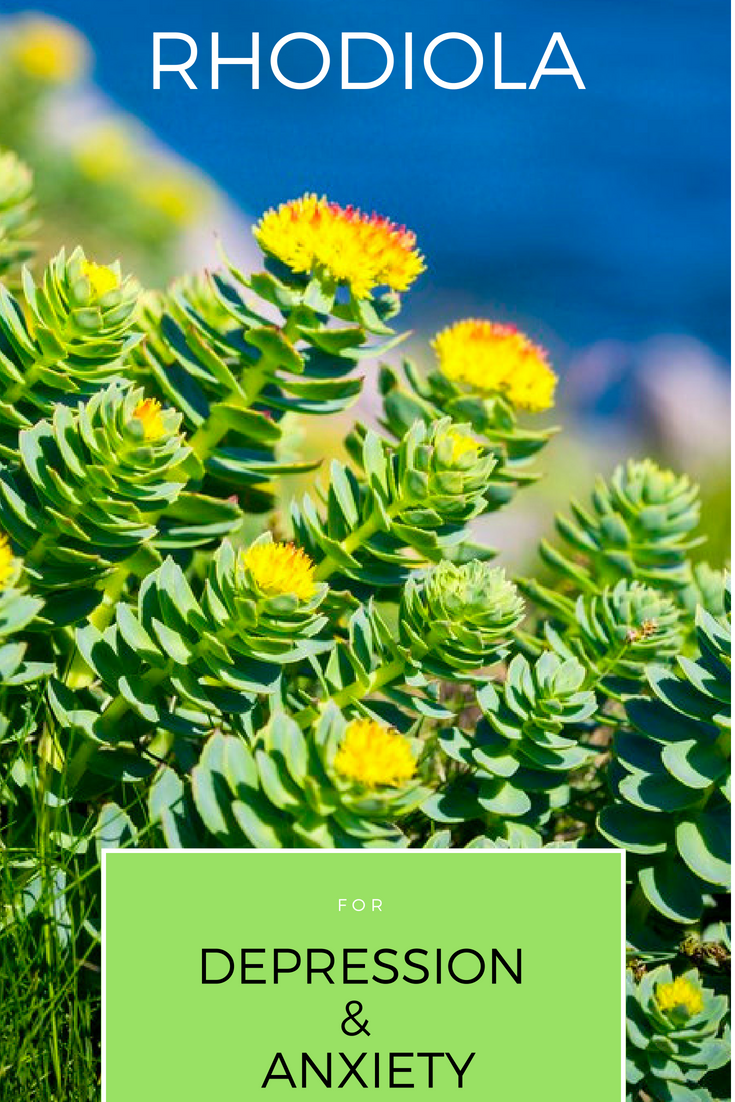 rhodiola for anxiety and depression header