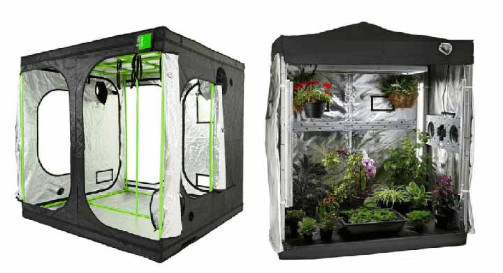 grow tents product reviews