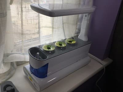 AeroGarden Sprout growing side view