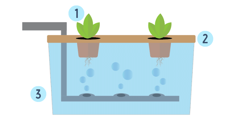 floating hydroponic technique diagram