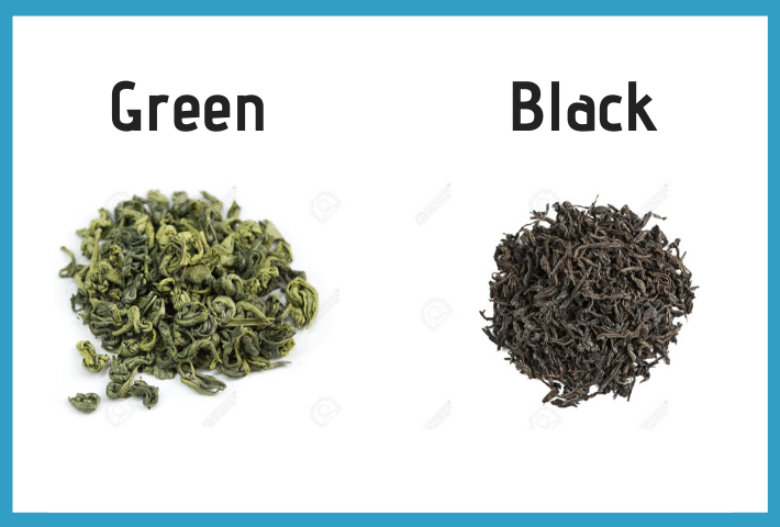 green tea oxidation graphic