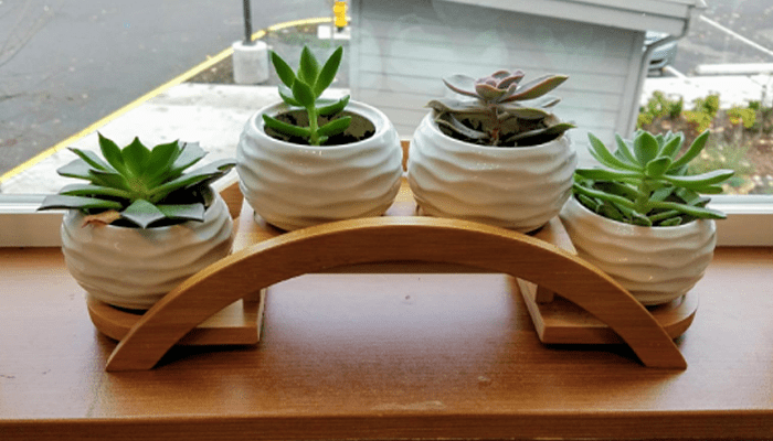 ceramic pots for indoor plants with bamboo tray