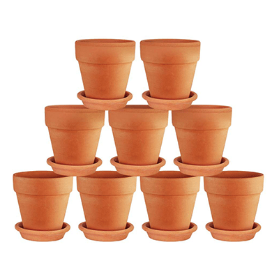 terra cotta clay pots for succulent