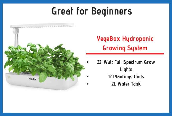 VegeBox Hydroponic System