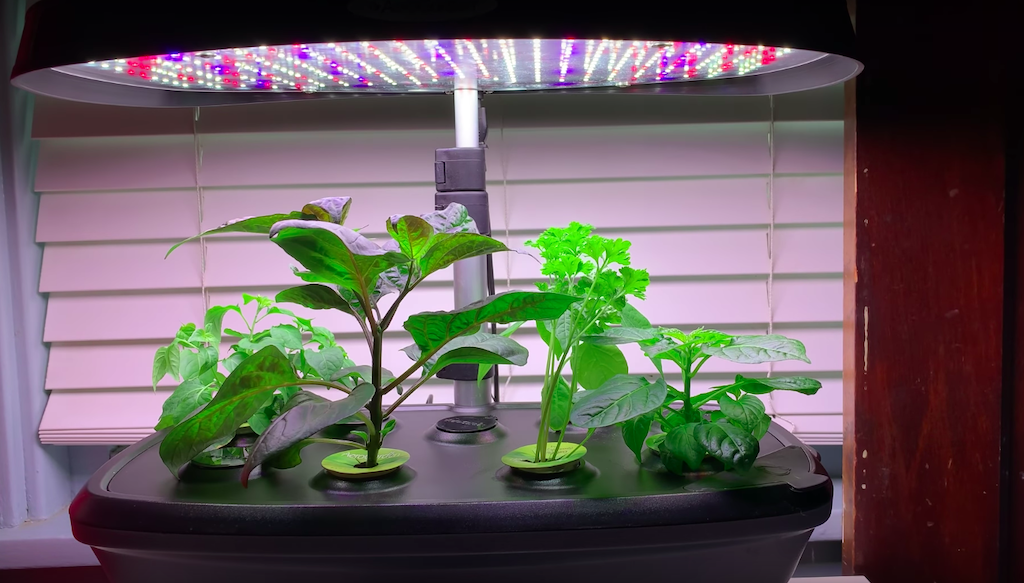 aerogarden bounty full spectrum lights
