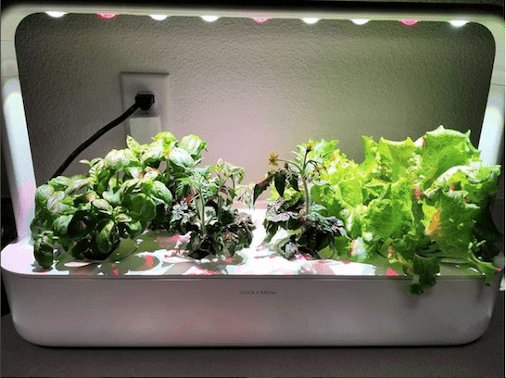 click and grow smart garden 9 front view