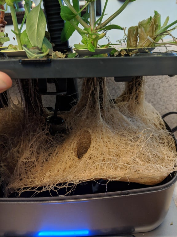 aeroponics grow reservoir