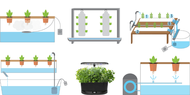 best hydroponic system