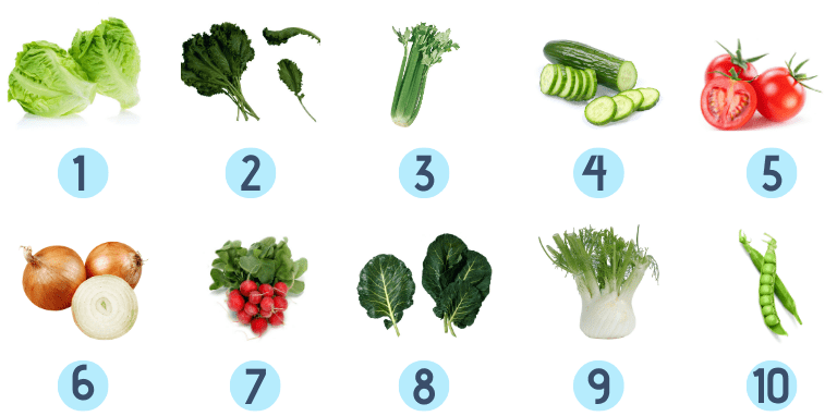 hydroponic vegetables chart