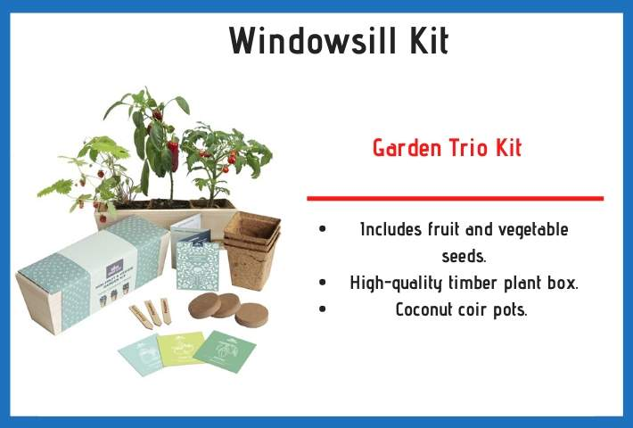 windowsill herb kit