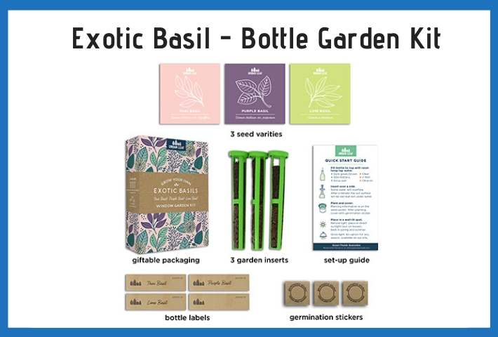 bottle herb gardening kit supplies