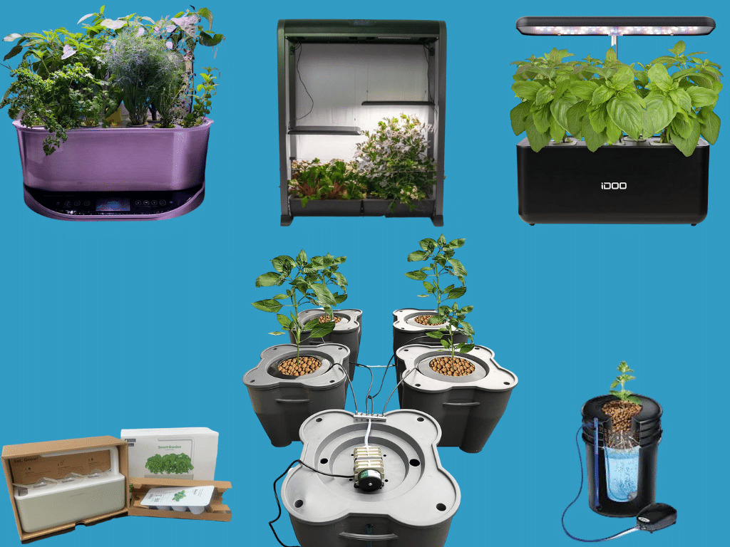 Hydroponic System for Vegetables