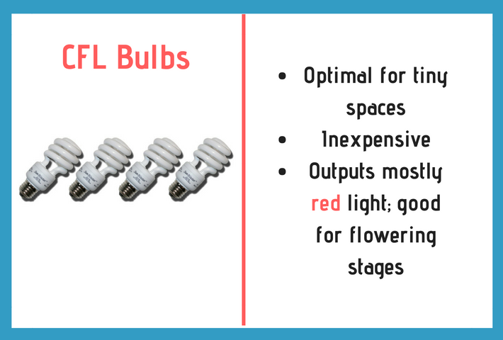 cfl bulbs info graph and information